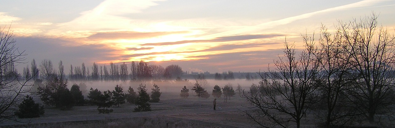 cropped-nebel_park_12804.jpg
